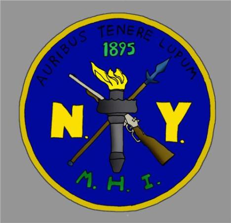 New York (older patch, predates olive drab ones)